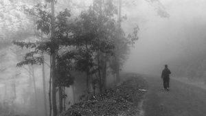 way-to-singalila