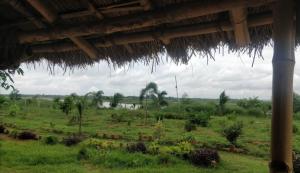 view-from-mundira-camp
