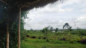 view-mundira-musical-camp