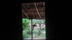 window-view-mundira-camp