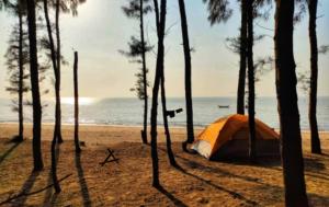 Tents_at_Bagra_Beach_Camp